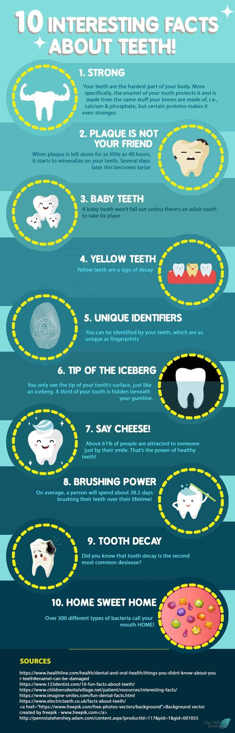 Interesting Facts About Teeth Infographic